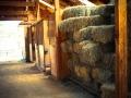 Aspenwood Stables - Hay & Stalls